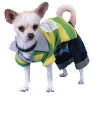 חולצת פולו לכלב