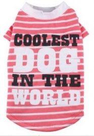חולצה לכלב - הכלב הכי מגניב בעולם