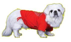 חולצה אדומה עם לב לכלב