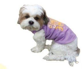 גופייה לכלב - נצנות שמח Happy Giltter