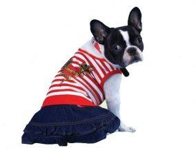 חצאית ג'ינס וחולצה אדומה עם פסים לכלב