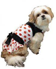 שמלת פולקה לכלב - נקודות כתומות